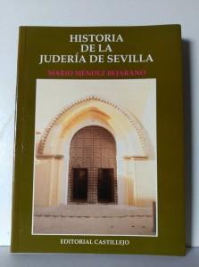 Historia de la Judería de Sevilla