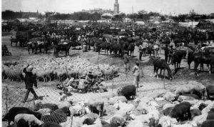 Historia de la Feria de San Miguel